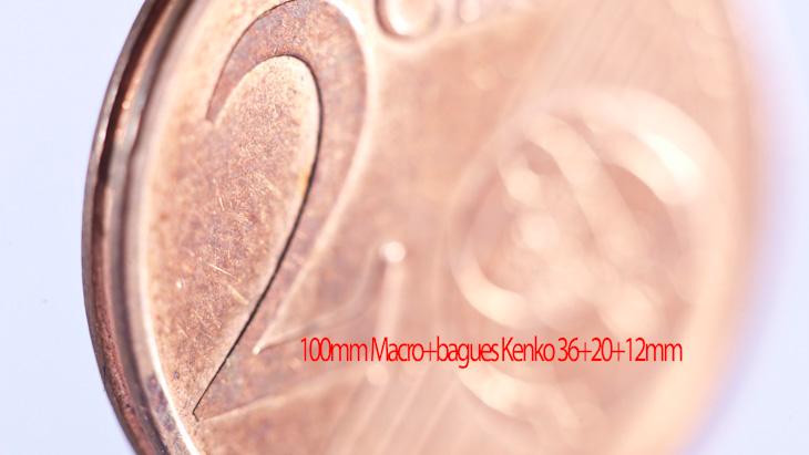 100 macro + bagues kenko faible profondeur de champ