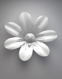 ©Paviot-photo-nature-morte-fleur
